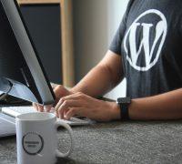 The ultimate blog software–WordPress